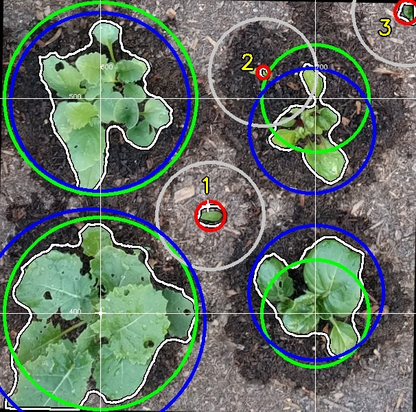 detected plants and weeder disruption circle